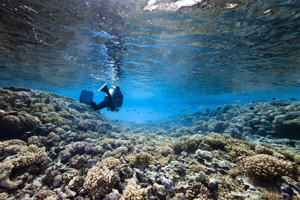 Plavba rajskou zahradou (Seychely) -